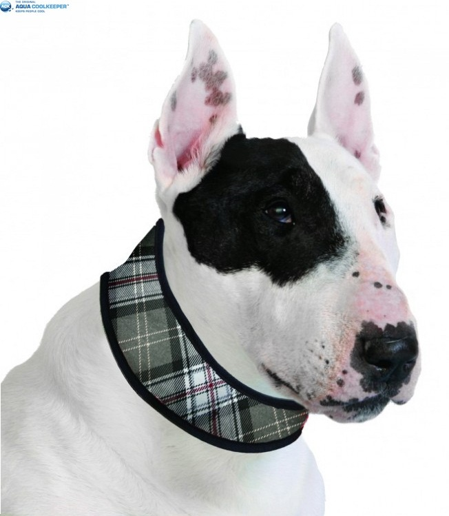 Cooling collar Scottish Grey